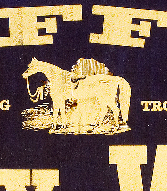 "Raffle for the Young Trotting Horse ""Billy Wise"" at the Parlor Billiard Hall [Opening lines of broadside]. Unknown."