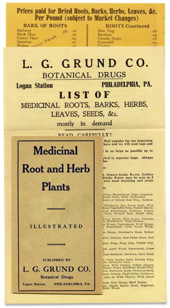 [L.G. Grund Co. Botanic Medicine Group]. L G. Grund Co.
