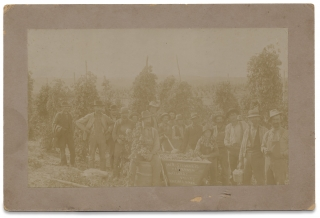 C.1894–1901 Naches Valley, Yakima, Washington Hop Ranch Photograph by E.L. Meyer]. E L. Meyer,...